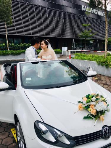 Wedding VW Cabriolet 5